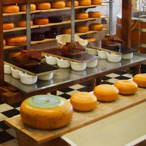 Talleres de degustación de quesos y charcutería gourmet en gijón