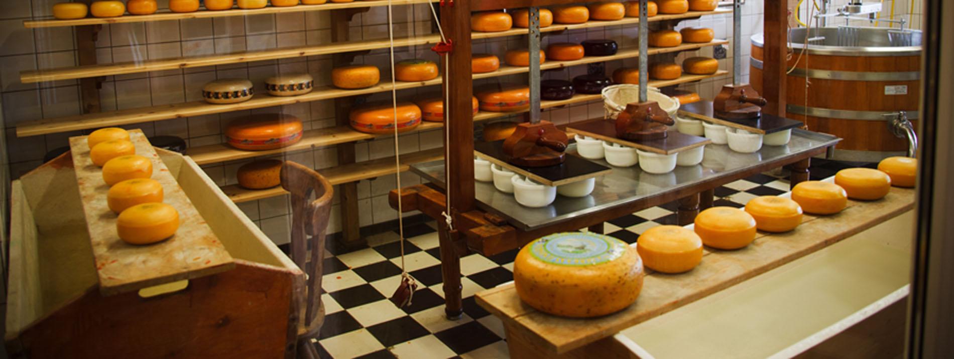 Degustación de quesos en Gijón - Asturias
