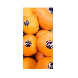 Venta de Naranjas Navel Lane Late en Pantruque Gijón Asturias